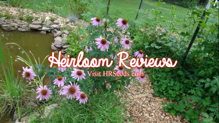 hrseeds, heirloom reviews, gardening, peppers, tomatoes