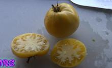 Basinga Tomato